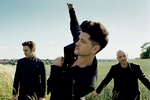 The Script