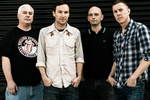 Toadies