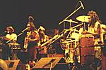 Steel Pulse