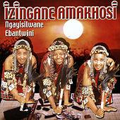 Izingane zoma http://www.rhapsody.com/artist/izingane-amakhosi/album