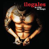 Ilegales - La Vida Es Fuego