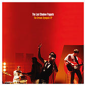 The Last Shadow Puppets: Is This What You Wanted?