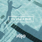 Pitto - Fly Like A Bird