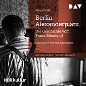 Berlin Alexanderplatz - Die Geschichte vom Franz Biberkopf (Gekürzt)