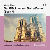 Der Glöckner von Notre-Dame (Buch 7)