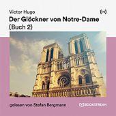 Der Glöckner von Notre-Dame (Buch 2)