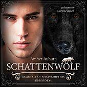 Schattenwolf, Episode 6 - Fantasy-Serie (Academy of Shapeshifters)